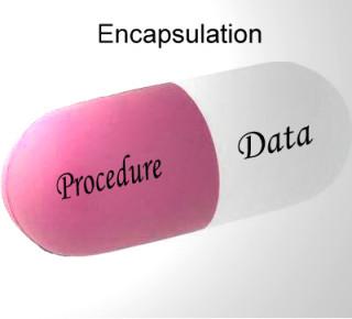 encapsulation-data-procedure-oop-320x290