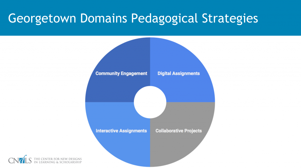 Georgetown Domains Pedagogical Strategies