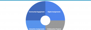 Georgetown Domains Pedagogical Strategies