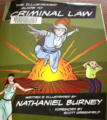 Illustrated Guide to Criminal Law