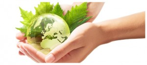 8 Sustainability1
