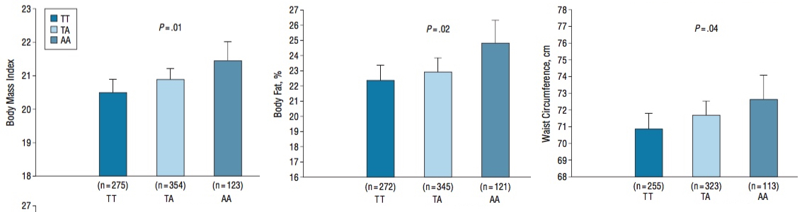 Figure 1. Association between the FTO polymorphism rs9939609 and mean body mass index (calculated as weight in kilograms divided by height in meters squared), body fat percentage, and waist circumference. Error bars indicate 95% confidence intervals. Values are adjusted for center, sex, and age.  Arch Pediatr Adolesc Med. 164(4):328-333 (2010)